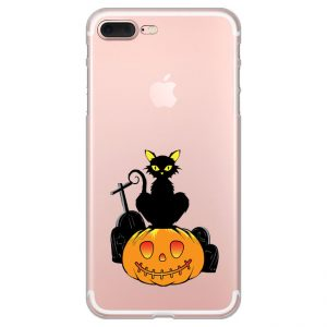 cat-on-the-pumpkin